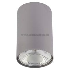 6877 SL серебро Nowodvorski Электростандарт Накладной точечный светильник