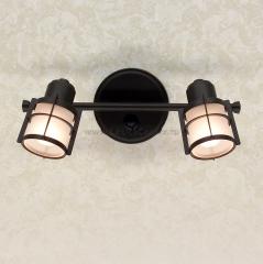 Citilux Реймс CL563521 Светильник настненно-потолочный