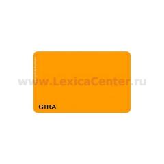 Gira Ключ программирования для электронного кодового замка (G260800)