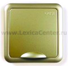 Гуси-Электрик С1Р9-005 Механизм розетки влагозащищенный с БЗК, без ЗП, 16 А, 250 V,цвет мат. золото