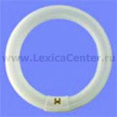Лампа люминесцентная Philips TLE 22W/33-640 G10q белая
