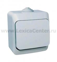 Lexel Этюд Одноклавишный выключатель (СХ. 1) сер. (накладные) (BA10-041c)
