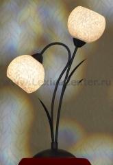 Настольная лампа Lussole LSF-6294-02 BAGHERIA