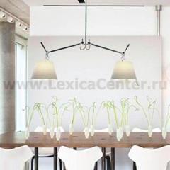 Потолочный светильник Artemide 0630010A+0372050A Tolomeo
