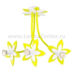 Потолочный светильник Nowodvorski 6898 FLOWERS