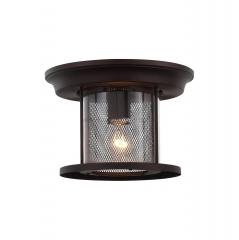 Уличный потолочный светильник St luce SL080.402.01